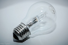 light bulb Nic Taylor